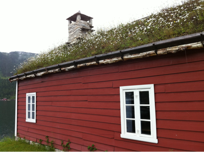 Un tetto fiorito